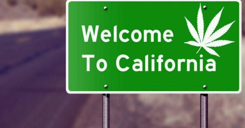 El mercado de cannabis más grande del mundo: California