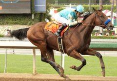 Los caballos de carreras más famosos de la historia