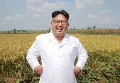 Hay un tesoro escondido en Corea del Norte: 10.000 millones de minerales