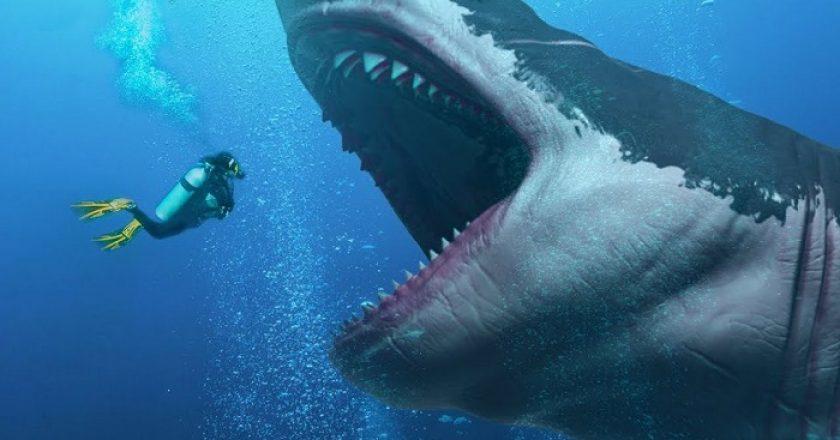 Las verdaderas dimensiones del Megalodon, el mega tiburón prehistórico