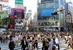 ¿Dónde se vive mejor? Aquí están las 10 mejores ciudades de 2020