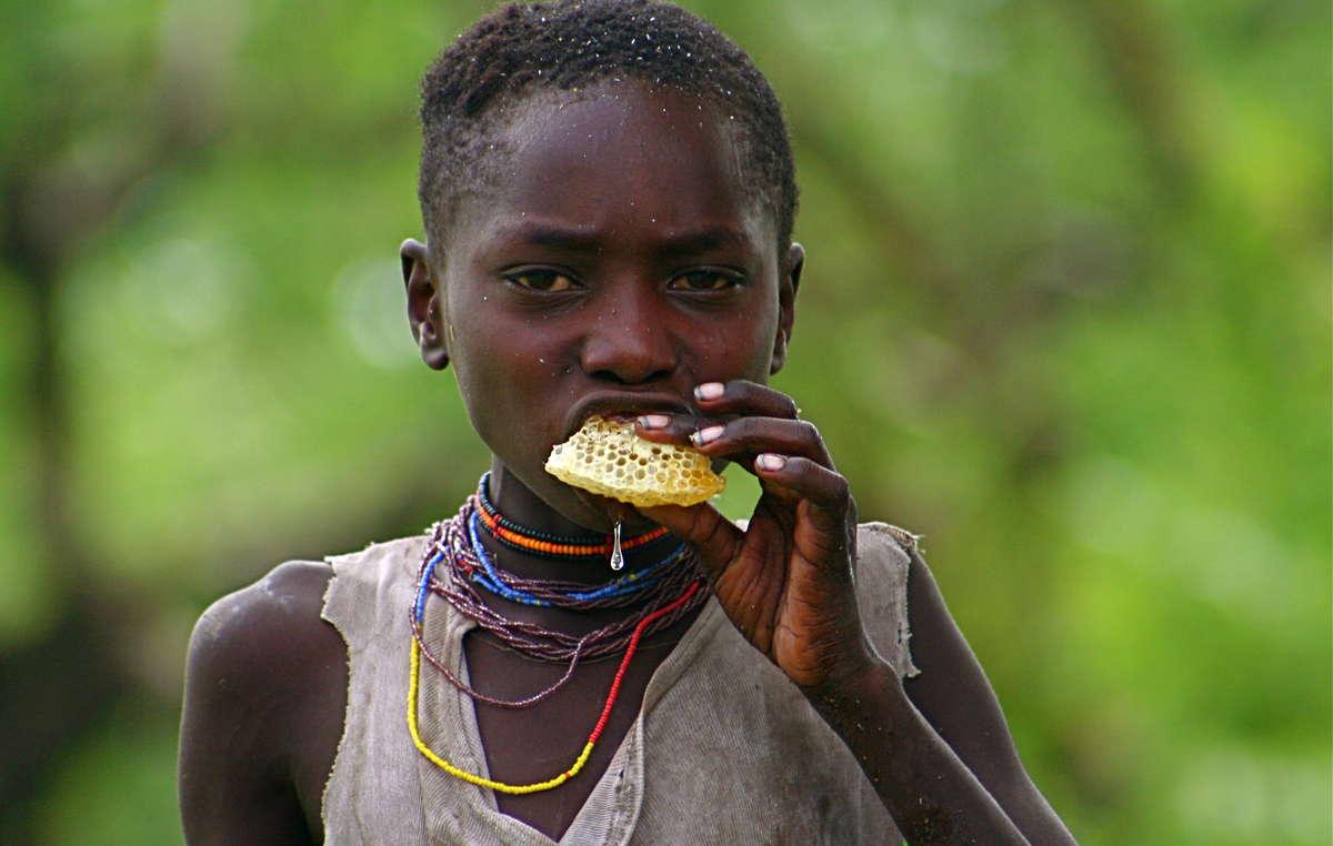 La dieta saludable de los Hadza, una tradición de 40 mil años