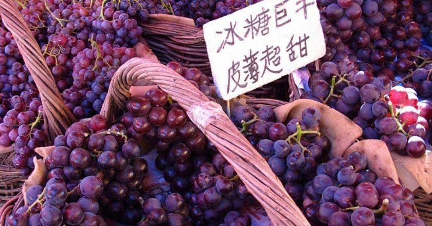 ¿Quién produce más uvas? Los 10 principales países productores