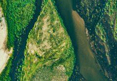 ¿Qué son las materias primas ambientales o Environmental Commodities?